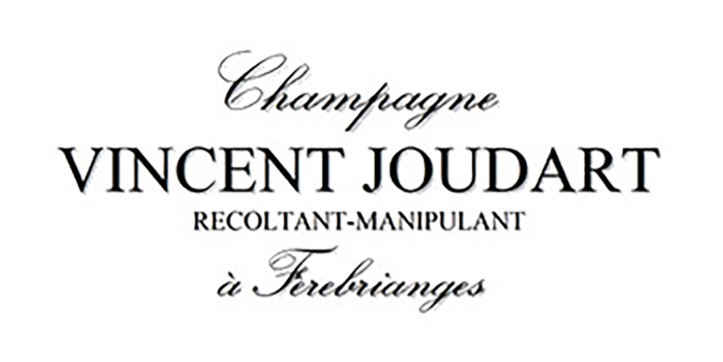 vincent-jourdart logo